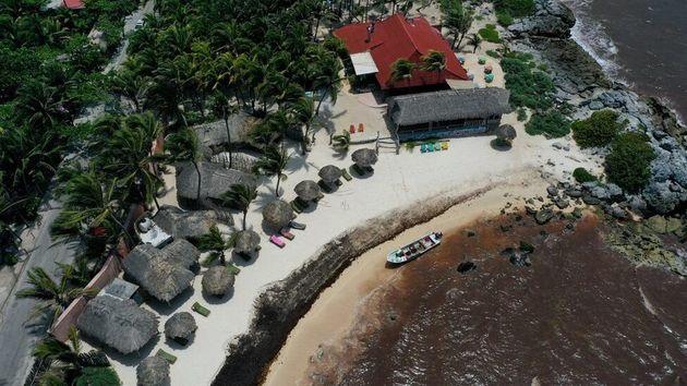 Καραϊβική: Οι εντυπωσιακές παραλίες έχουν γεμίσει φύκια και δεν θυμίζουν σε τίποτα την άλλοτε ομορφιά
