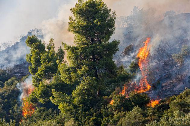 Yψηλός ο κίνδυνος πυρκαγιάς και την Πέμπτη - Ποιες περιοχές είναι πιο επιρρεπείς στην εκδήλωση