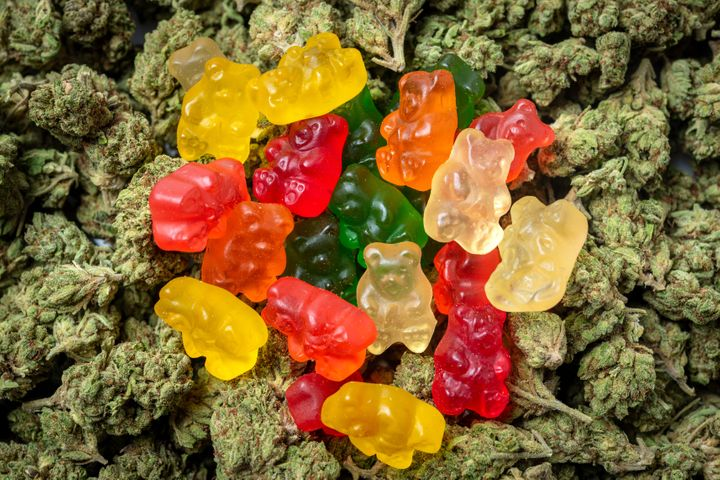 This photo shows organic gummy bear candies that are infused with cannabis.