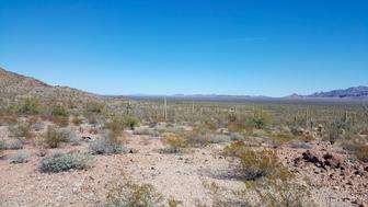 This undated image provided by Tucson Sector Border Patrol shows the desert terrain close to Arizona's boundary with Mexico near Lukeville, Ariz. Large groups of Guatemalan and other Central American migrants have been abandoned in recent weeks. U.S. Border Patrol officials say the trend is putting hundreds of children and adults at risk. (Tucson Sector Border Patrol via AP)