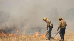 El fuego arrasa 38.023 hectáreas este año hasta el 16 de junio, cuatro veces más que en