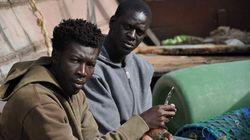 Mostras em São Paulo destacam o melhor do cinema africano