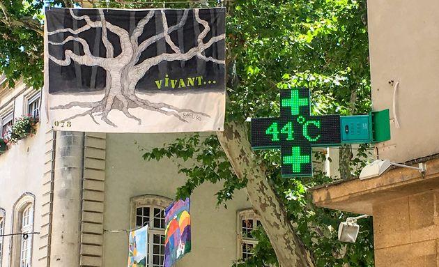 Le record absolu de température en France a été battu à Carpentras, où...