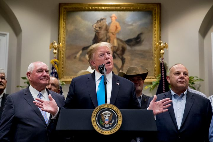 President Donald Trump, accompanied by Agriculture Secretary Sonny Perdue, left, speaks at a White House meeting on May 23.