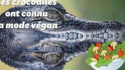 Les crocodiles ont aussi connu la mode