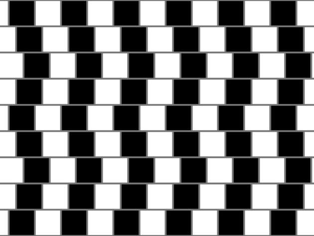 Fibonacci/Wikimedia Commons/Creative Commons