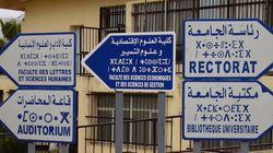 ENS de Bouzareah: sortie de la 1ère promotion d'enseignants de