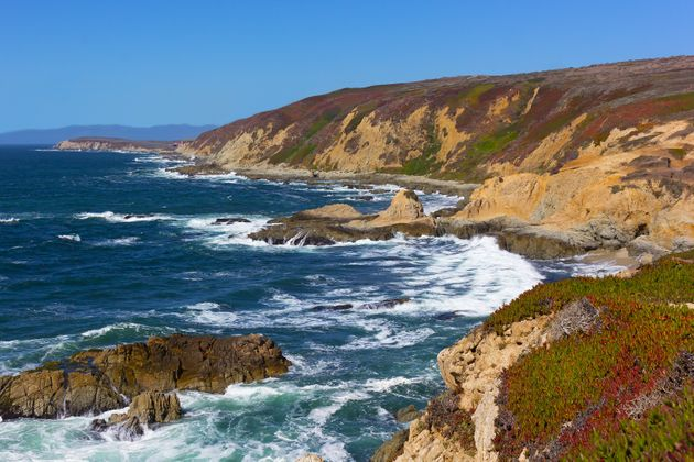 The Bodega Head peninsula where mussels died in the