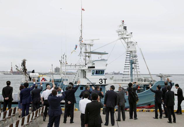 Ιαπωνία: Ξεκίνησε το κυνήγι φαλαινών μετά από 30 χρόνια - Στα δίχτυα τα πρώτα
