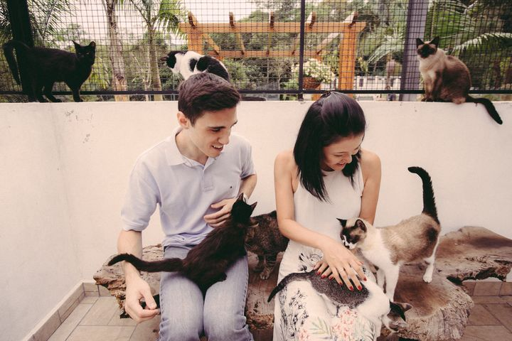 Brazilian couple Karina Setani and Renato Fernandes took their engagement photos at an animal shelter.