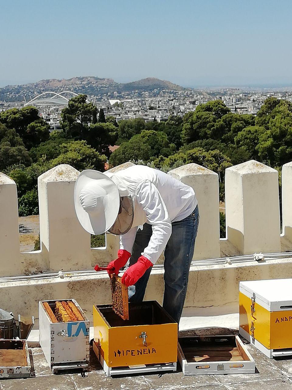 Μελίσσια για πρώτη φορά στη στέγη δημόσιου κτηρίου στην