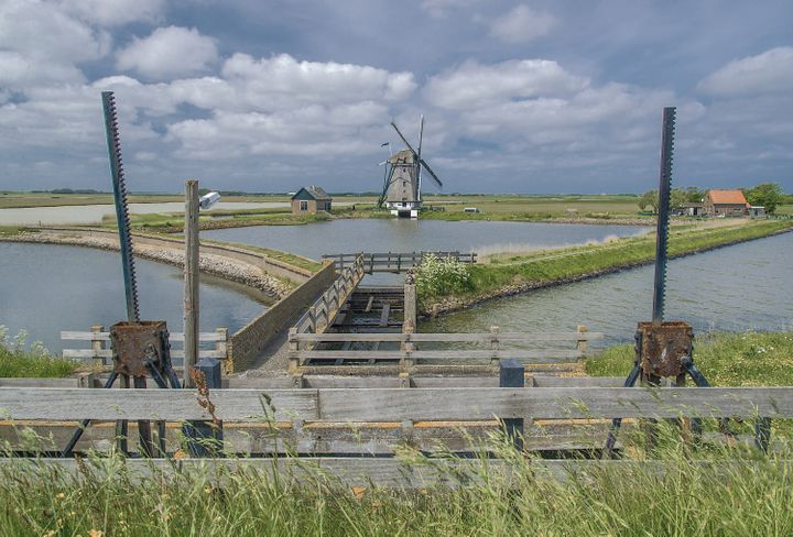 <em>Over centuries, the Dutch reclaimed land by surrounding wetlands with dikes and then pumping the water out using windmill