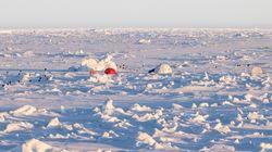 Επιστήμονες θα «παγώσουν τους εαυτούς τους» στην Αρκτική για ένα