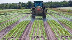 Pesticides: l'indépendance d'un comité remise en