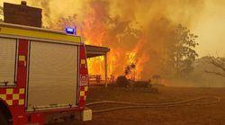 WWF: Οι «γιγαντιαίες πυρκαγιές» απειλούν την