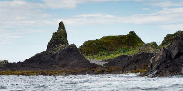 6.2 Magnitude Earthquake Hits B.C.'s Haida Gwaii