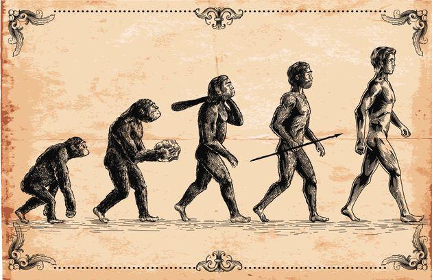 Dente e osso del nonno dei Neanderthal ritrovati sul Monte Fenera: hanno 300mila