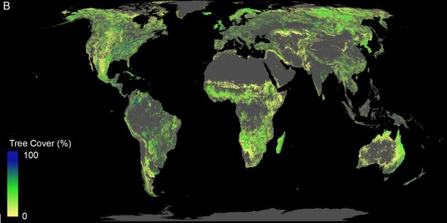 Έρευνα: Ποιος είναι ο αποτελεσματικότερος τρόπος αντιμετώπισης της κλιματικής