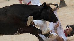 Dans le Gard, un homme encorné lors d'un taureau-piscine en urgence
