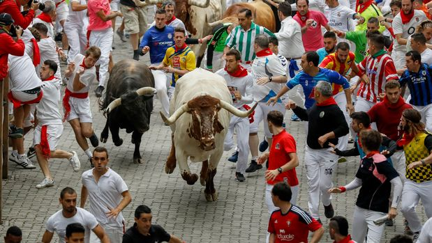 PAMPLONA, SPAIN - JULY 07: Revellers run with Puerto de San Lorenzo's fighting bulls before entering the bullring during the second day of the San Fermin Running of the Bulls festival on July 07, 2019 in Pamplona, Spain. The annual Fiesta de San Fermin, made famous by the 1926 novel of US writer Ernest Hemmingway entitled 'The Sun Also Rises', involves the daily running of the bulls through the historic heart of Pamplona to the bull ring. (Photo by Pablo Blazquez Dominguez/Getty Images)