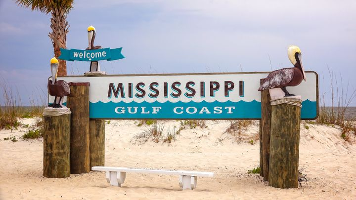 All public beaches along Mississippi's coast have been ordered closed to bathers due to a bloom of harmful blue-green al