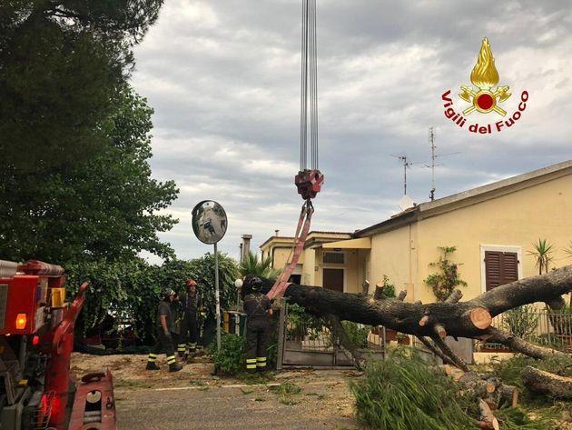 Costa adriatica colpita dal maltempo: spiagge distrutte e vento