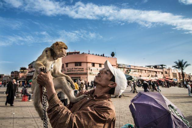 Place Jemaa El Fna à Marrakech: De gros changements en
