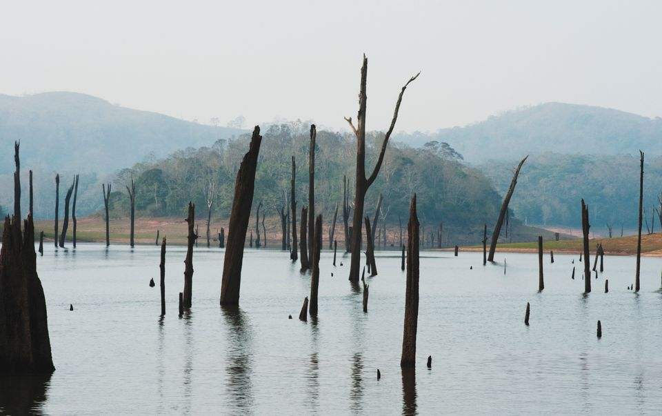 A view of the Thekkady lake in