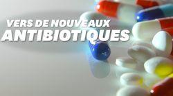 Ces chercheurs ont conçu des antibiotiques qui évitent les