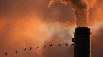 FILE - In this Jan. 10, 2009 file photo, a  flock of geese fly past a smokestack at Westar Energy Inc.'s Jeffery Energy Center coal power plant near Emmitt, Kan. The utility said it expects to spend at least $200 million on equipment to cut emissions at the plant  under a legal settlement announced Monday, Jan. 25, 2010. (AP Photo/Charlie Riedel, File)