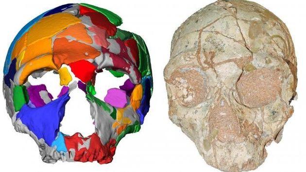 Un estudio sugiere que el Homo Sapiens llegó a Europa 150.000 años antes de lo