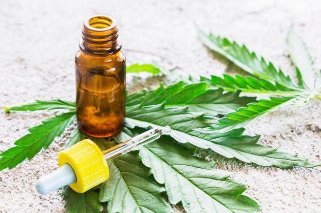 Le cannabis thérapeutique va être testé en