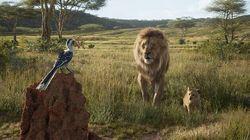 """""""Le Roi Lion"""" est une prouesse d'animation aux airs de documentaire"""