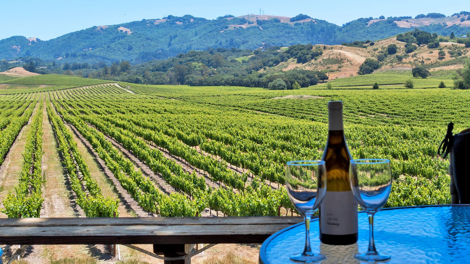 10 Wines From The World's Best Vineyards That You Can Buy Today