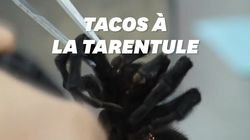 Au Mexique, la tendance des tacos à la tarentule menace notre