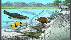 Έρευνα: Τα θαλάσσια «τέρατα» της αρχαίας θάλασσας