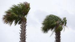 Rétrogradé en tempête tropicale, Barry balaie les côtes de