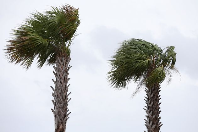 Rétrogradé en tempête tropicale, Barry balaie les côtes de la