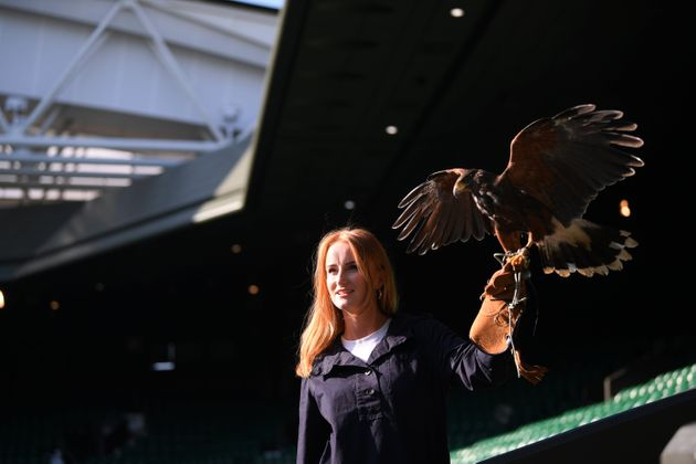 Imogen Davis and Rufus the Hawk pose for a portrait on July
