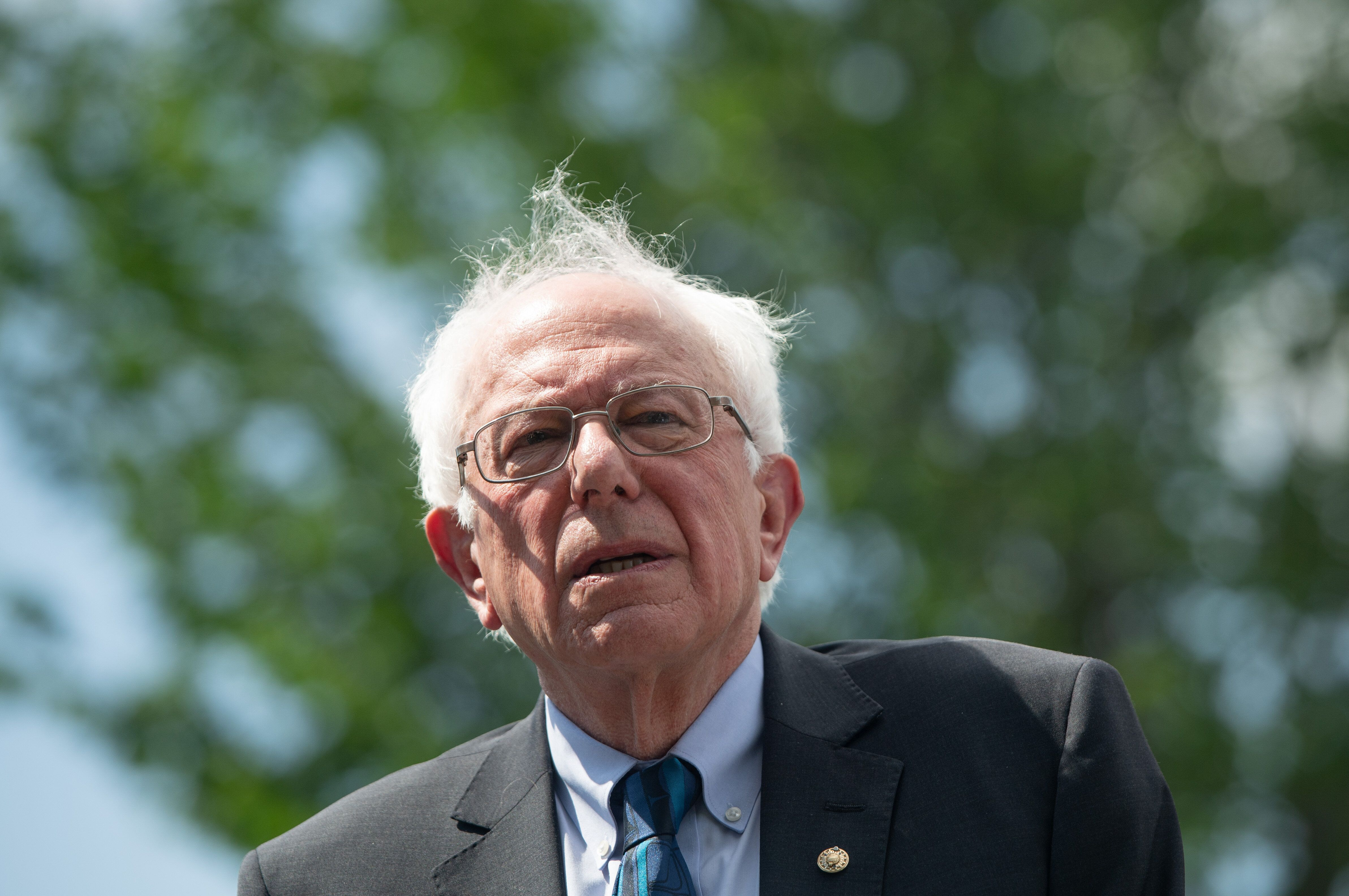 Sanders Suggests Pelosi Should Lay Off ...