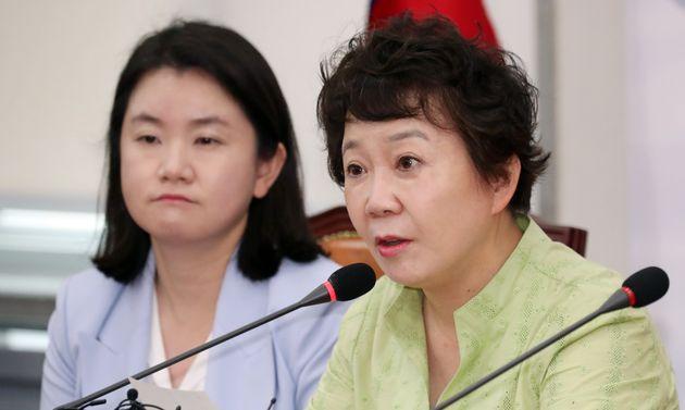 정미경 자유한국당 최고위원의 막말이
