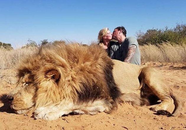In posa davanti al leone ucciso: coppia di cacciatori canadesi nella