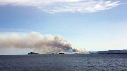 Sardegna in fiamme: i turisti scappano a piedi in spiaggia dall'Hotel. Evacuati due