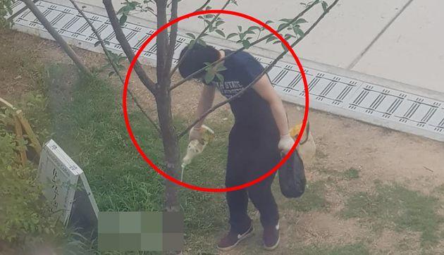 경찰이 경의선 숲길 고양이를 잔인하게 죽인 남성을 쫓고