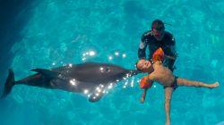Qu'est-ce que la delphinothérapie dont Carla Bruni-Sarkozy vante les