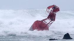 올해 첫 태풍이 이번 주말 한국에