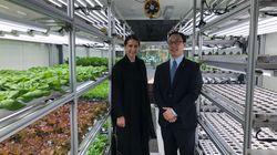 """""""テック×農業""""で都市化に対応。世界注目の未来型植物工場が持つ「農民2500万人消失」の危機感"""