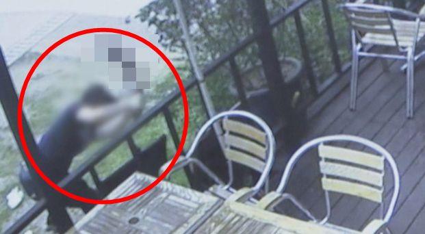 사건은 13일 새벽 서울 마포구 경의선 숲길 책거리의 한 가게에서 벌어졌다. A씨는 데크에서 놀던 고양이 '자두'를 바닥에 패대기치고, 짓밟아 죽였다. A씨는 고양이 사료에 세제로...