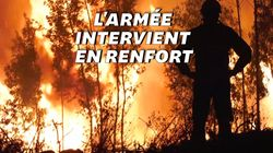 Au Portugal, les images du vaste incendie qui ravage le centre du