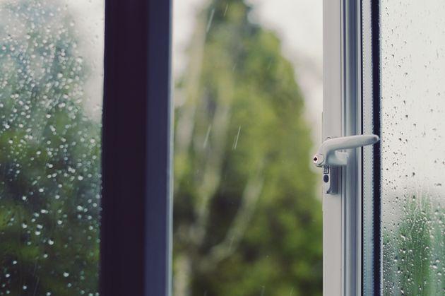 혼자력 '만렙'에도 여전히 혼자하기 어려운